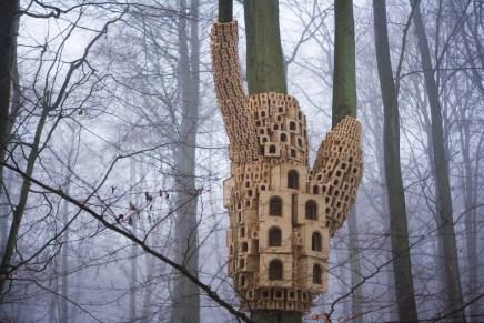 Casas para pájaros