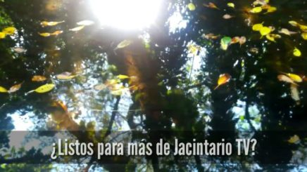 Pronto vuelve JacintarioTV
