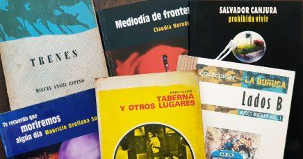 La problemática del libronacional