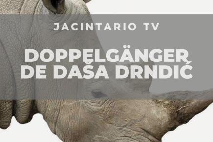 Doppelgänger de DašaDrndić